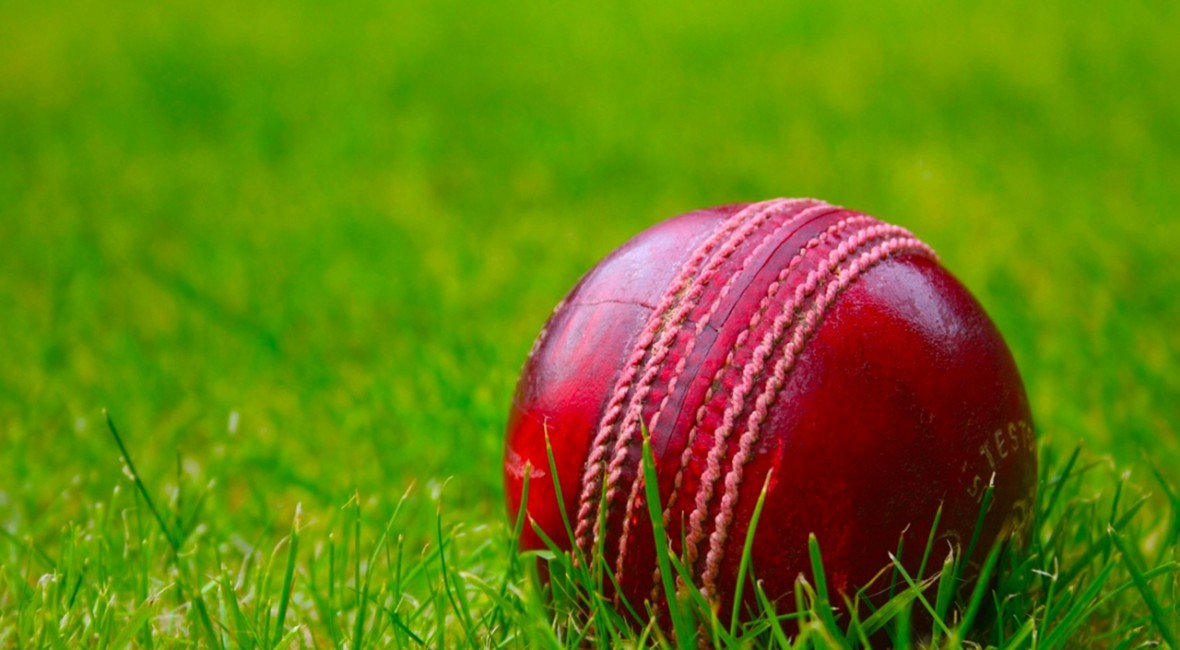 blog-cricket-entpreneurship